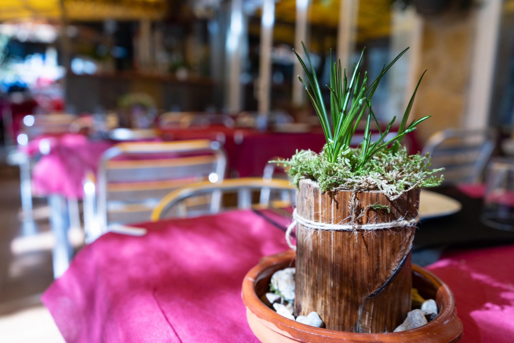 Restaurante Dharma